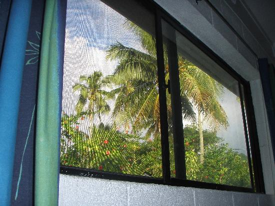 """Aremango Guesthouse: """"picture postcard"""" view from our window"""