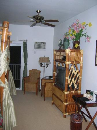 The Palms Cliff House Inn: Tropical Splendor Room