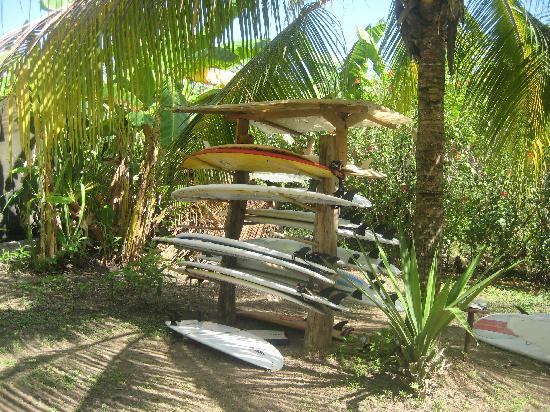 Zopilote Surfcamp: Surfboards!