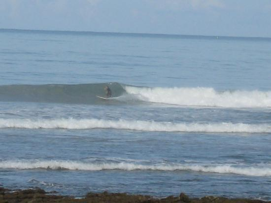 Zopilote Surfcamp: Bruno surfing out front of camp