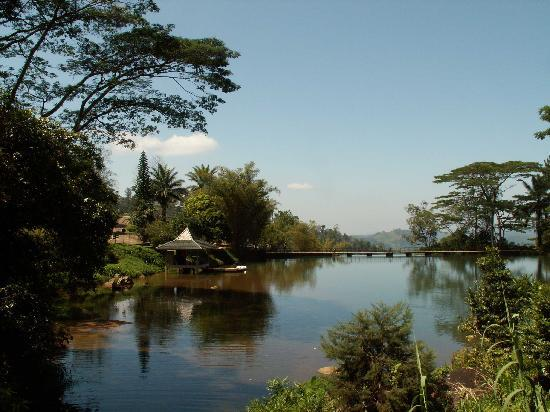 Elkaduwa, Sri Lanka: der Weiher