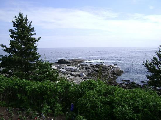 Marginal Way: Amazing!
