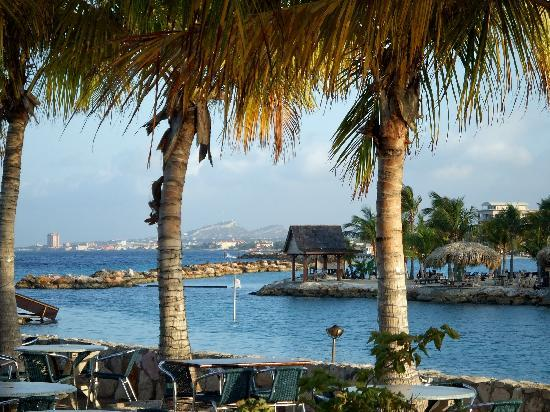 The Royal Sea Aquarium Resort: View from resort beach looking across the lagoon with Willemstad in the distance