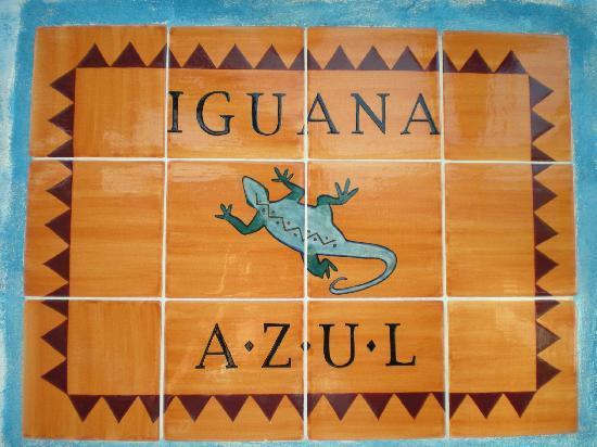 Iguana Azul: Sign