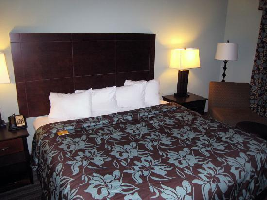 Holiday Inn Hotel & Suites, Williamsburg-Historic Gateway: Bed