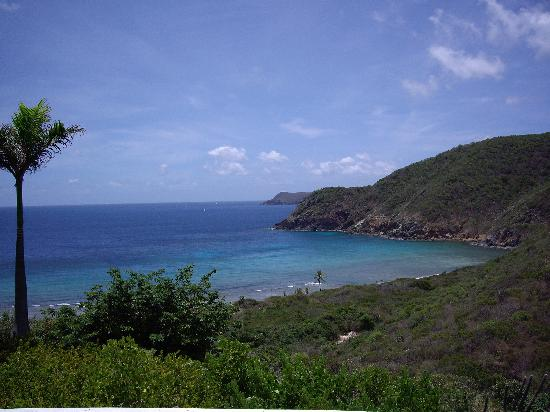 Guana Island: view from our room