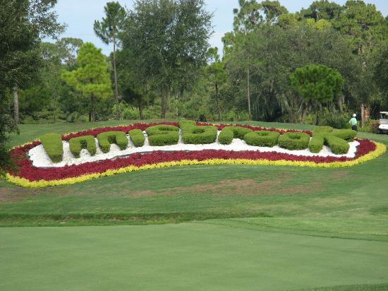 Innisbrook Golf Course - Picture of Innisbrook, A Salamander ... on doral resort map, kirkwood resort map, copperhead course map, pinehurst resort map,