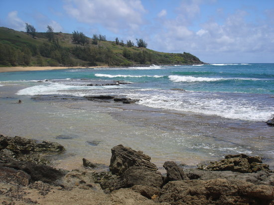 Hawaii Movie Tours: Moloaa Bay