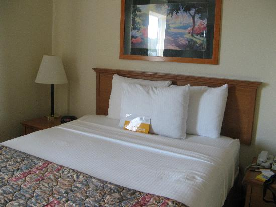 La Quinta Inn & Suites Portland Airport : Size of the bed