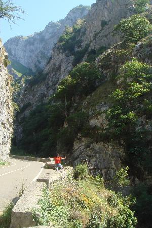 Parque Nacional de Picos de Europa : Picos de Europa