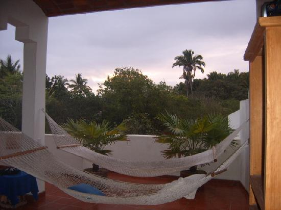 Casa de Los Pelicanos: A quiet place to read and watch the iguana in the trees