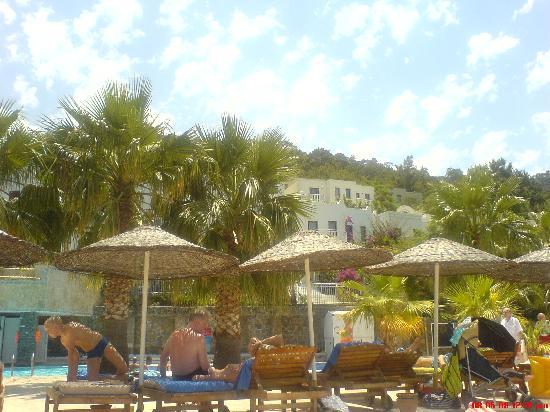 Blue Dreams Resort: View from my sunbead