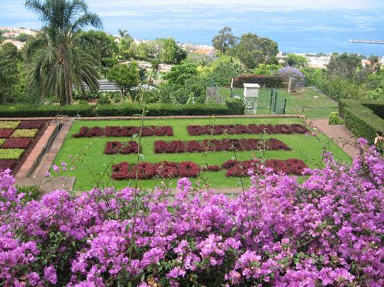 Madeira Panoramico Hotel: Jardim Botanico