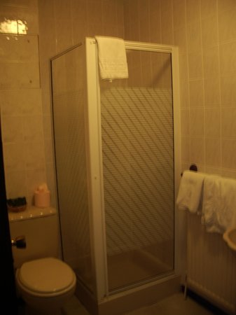 Regency Hotel Gatwick: Our en suite bathroom (shower only - no bath)