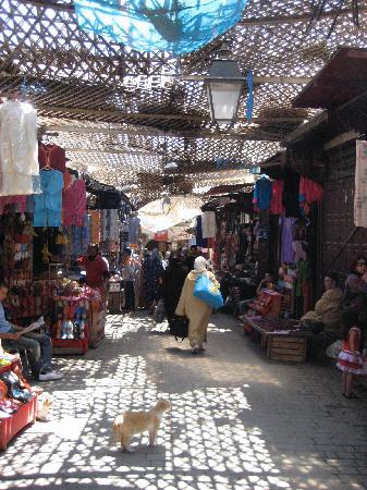 Dar El Menia : Market in Old Fez is a few steps away from the front door