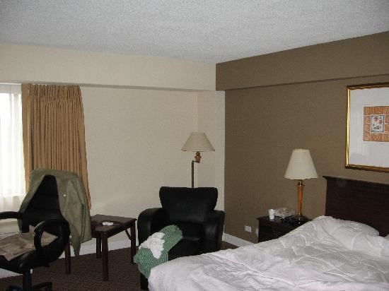 Holiday Inn Rolling Meadows - Schaumburg Area: Room