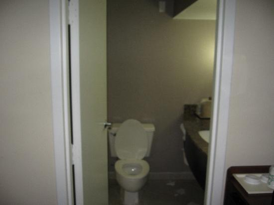 Holiday Inn Rolling Meadows - Schaumburg Area: Bathroom