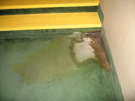 Lancaster Host Resort and Conference Center: Disgusting carpet