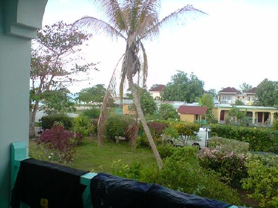 Coral Seas Garden: View from balcony