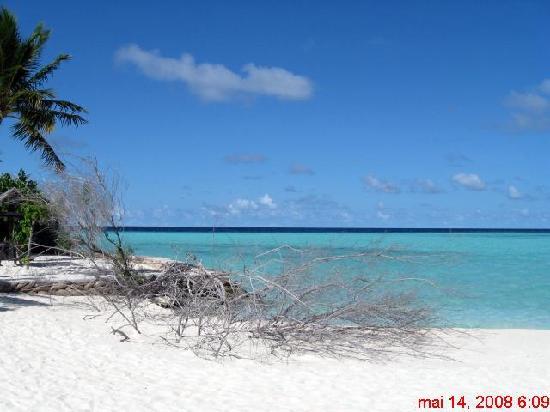 Embudu Village: Embudu bout île