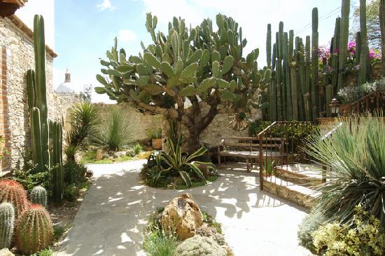 Mineral de Pozos, Mexique : Posada De Las Minas #7