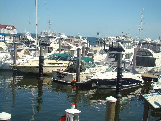 Saybrook Point Inn & Spa: marina