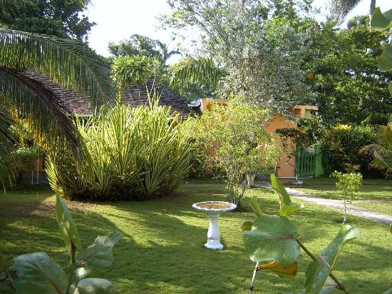 Our Past Time Villas : the gardens in front