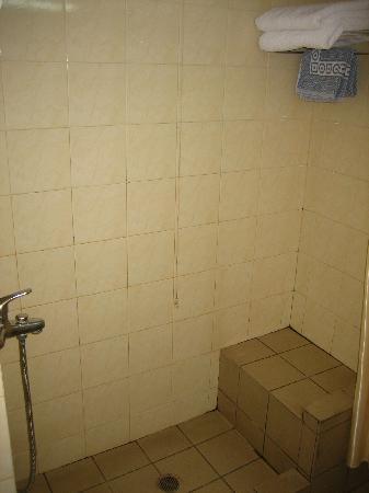 Jason Inn : Bathroom - shower