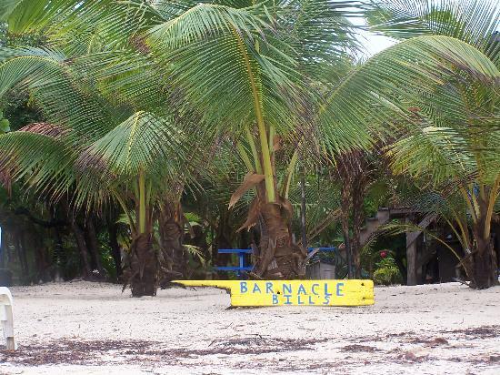 Barnacle Bill's Beach Bungalows: Bill's beach