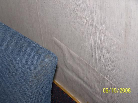 Travelodge Mill Valley/Sausalito: Wallpaper peeling
