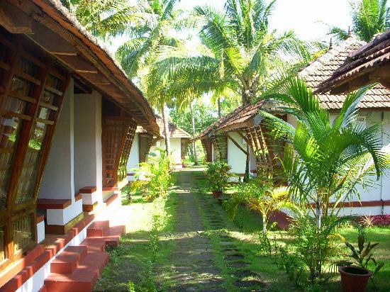 Coir Village Lake Resort: Back side of cottages