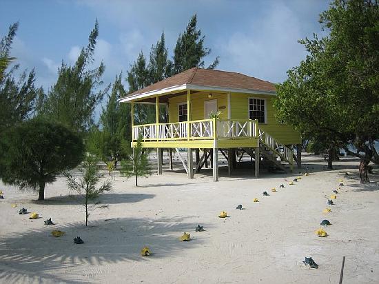 Coco Plum Island Resort : Our Cabana - the Maya Mystic