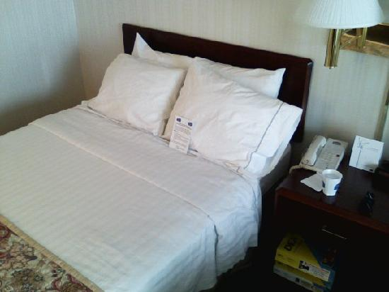 Fairfield Inn & Suites Portland Airport: The sorry bed