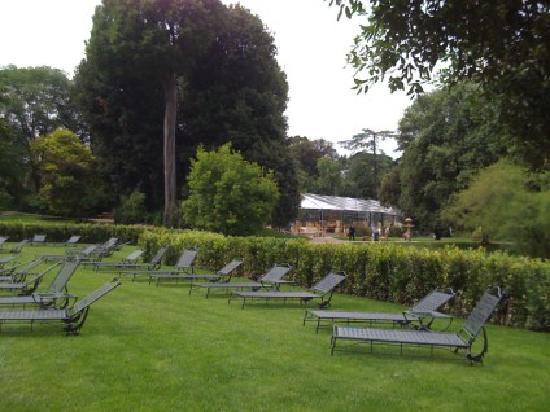 Four Seasons Hotel Firenze: bordo piscina - evento corneliani