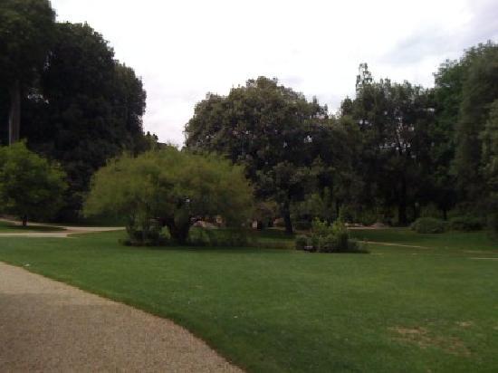 Four Seasons Hotel Firenze: giardino