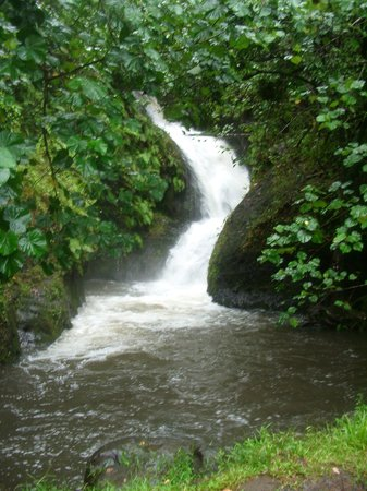 Papua ( Wigmore's) Waterfall