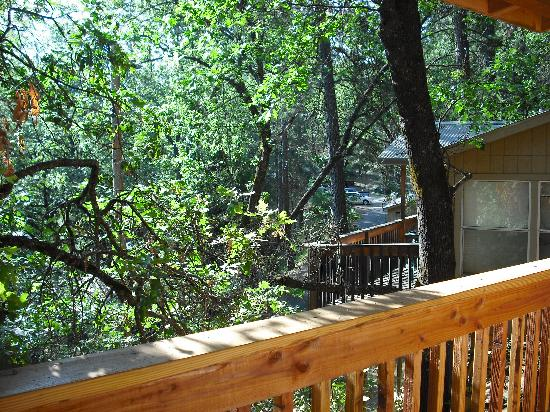 Front Of House Picture Of Yosemite Bug Rustic Mountain