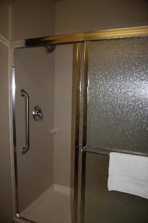 Holiday Inn Hotel & Suites Salt Lake City-Airport West: Shower
