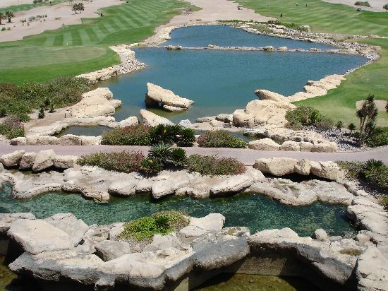 The Westin Soma Bay Golf Resort & Spa: Golf 3
