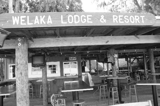 ‪‪Welaka‬, فلوريدا: Welaka Lodge Dock‬