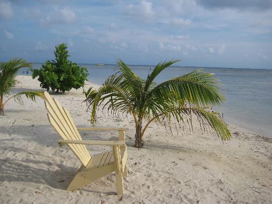 Sea Eye Resort: The private Bondo Beach, snockling included