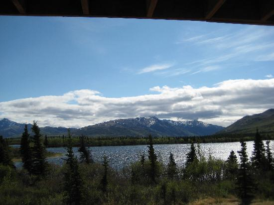 Healy, AK: A view from our room