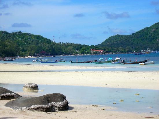 Koh Tao Cabana: spiaggia davanti con bassa marea