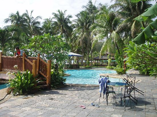 Beach behind the trees picture of primula beach hotel for Pool garden resort argao