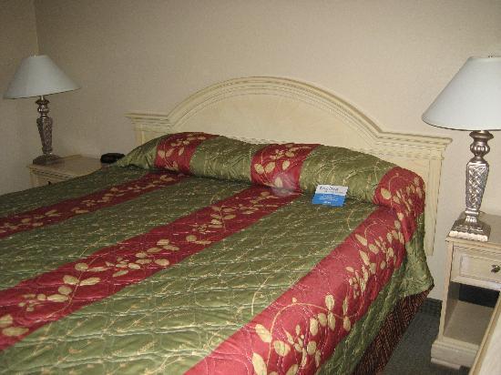 Pacific Inn Monterey: Bed