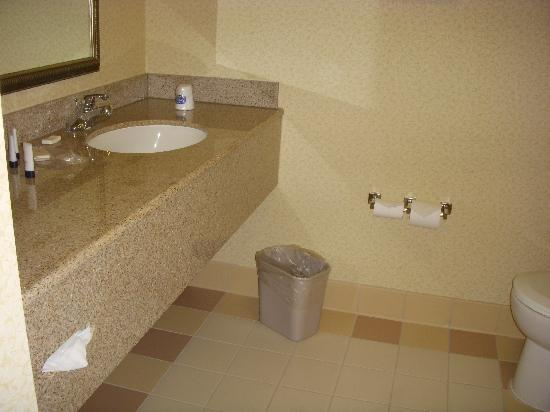 Fairfield Inn & Suites Sacramento Airport Natomas: Bathroom