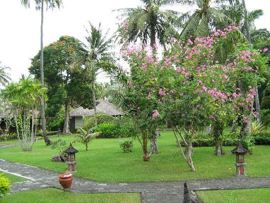 Kila Senggigi Beach Lombok: Hotel Grounds
