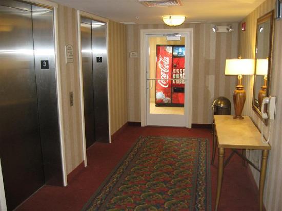 Hilton Garden Inn St. George: Elevator Lobby On The 3rd Flr