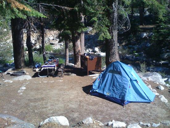 Lodgepole C&ground Full shot of #101 & Full shot of #101 - Picture of Lodgepole Campground Sequoia and ...