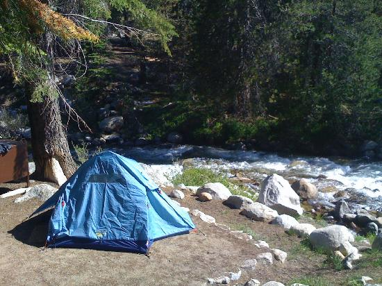 Lodgepole C&ground Tent pad and river! & Tent pad and river! - Picture of Lodgepole Campground Sequoia and ...